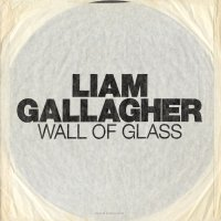 80. Wall Of Glass